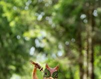 Finnish Ninja Squirrel