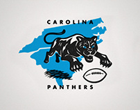 Carolina Panthers Hidden History