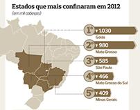Info mapa do confinamento | Revista Globo Rural
