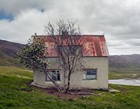 Hofsstaðir