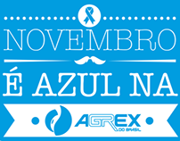 Novembro Azul - Endomarketing Agrex do Brasil