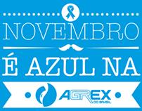 Novembro Azul - Endomarketing Agrex do Brasil