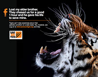 Aircel Save our Tigers ads