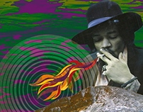 the hendrix fire