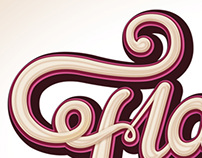 Schweppes / Lettering / Illustration