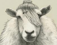 Nómada Market. Pura Wool Edition