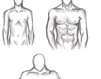 Estudo de estrutura masculina