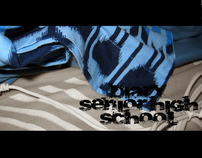 Diary Our High School !