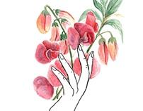 Hands & Botany