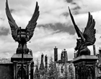 Orlando, New York and Las Vegas by Alan Lima