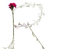 Field Flower Typeface