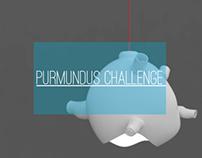 Purmundus Challenge 2013