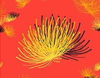 Surface Design Collection: Lehua Blossom