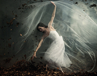 2013 - La Sylphide