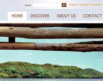 Plein Soleil Website