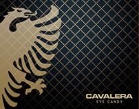 Catálogo Cavalera Eyewear