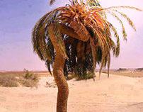 Palm fugitif