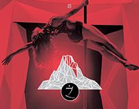 - ivana concert dvd / 2014