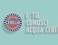 Acqua Cerelia's infographic