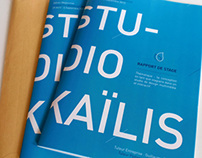 Internship Report - 2013