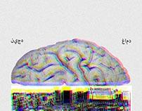 دماغ الإنسان المعاصر