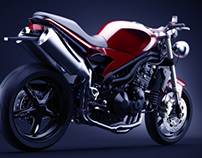 Triumph Speed Triple wiz