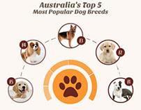 Australia's Top 5 Dog Breeds Infographic