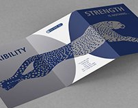 Leaflet and Business Card Concept