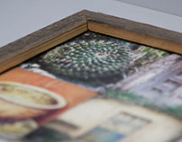 Closeup of Framed Print