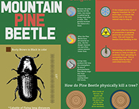 Mountain Pine Beetle Infographic