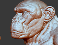 Sculpt/Rough 3D