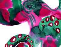 Octopus - Watercolor/Acrylic Study