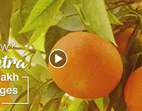 Cinemagraph - Oranges