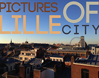 Pictures of Lille City