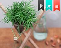 HIMALAYA - Plant Pot