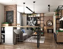 Design from KSD: Interior for Loft-Apartment