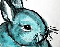 Drawings / Illustrations
