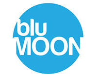 bluMOON Internal Communication Plan