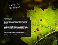 Champagne website