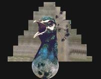 peacocks et planets