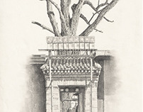 Beijing Door and Tree