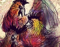 gallos cores
