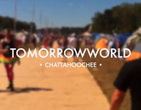 Aftermovie TomorrowWorld 2013