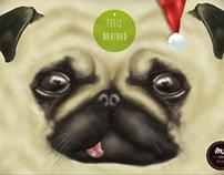 Postales Navideñas / Christmas Postcards