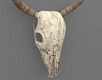 Bull's Skull (low poly model)