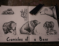 Cronicles of Bear