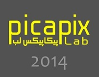 PicapixLab 2013