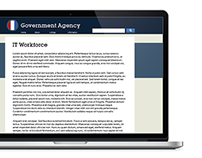 IT Workforce Rebranding for a US Government Agency