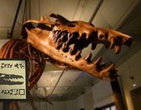 Indiana Bones et le mystère du Basilosaurus