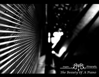 Beauty Of A Piano